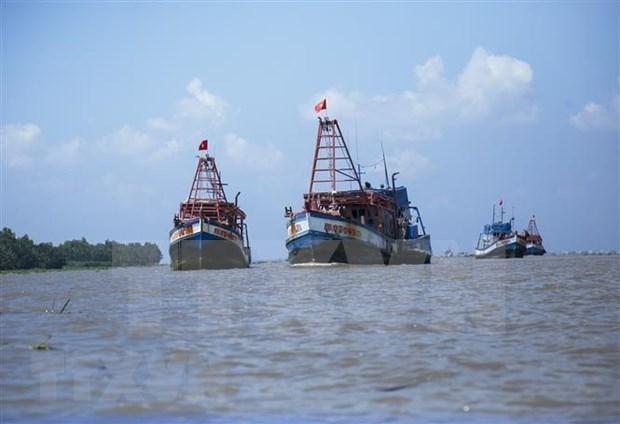 比利时越南友好协会反对使东海紧张局势升级的单方面行为 hinh anh 1