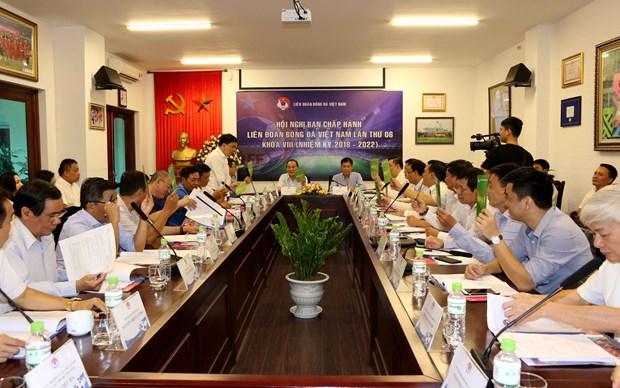 2020年越南足球甲级联赛将于6月5日重新启动 hinh anh 1