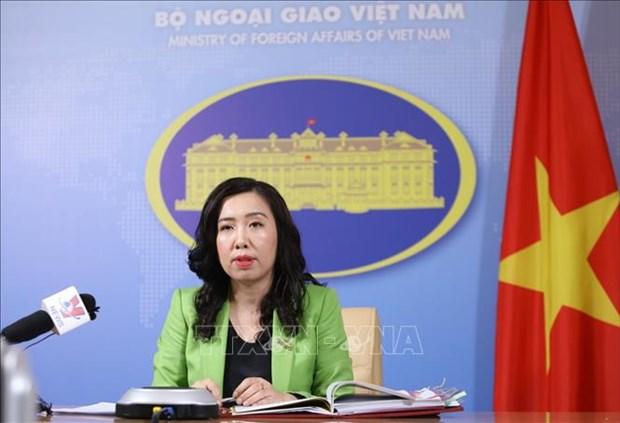 越南愿同有关国家合作 有效和可持续利用湄公河水资源 hinh anh 1
