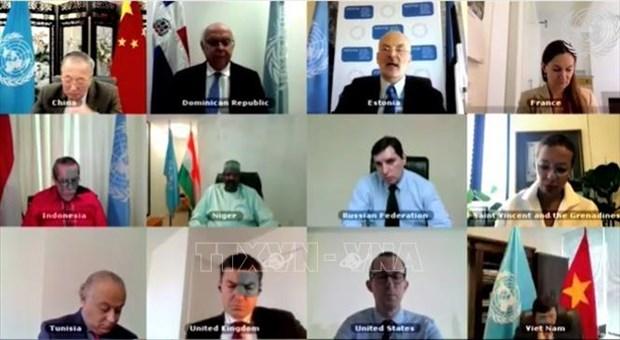 越南代表联合国安理会十个非常任理事国支持改进安理会工作方法 hinh anh 1