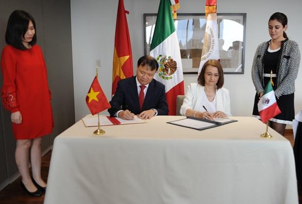 越南与墨西哥建交45年:越墨友好和双边合作关系不断深化发展 hinh anh 2