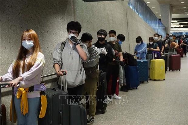 340名在美越南公民被安全接回国 hinh anh 1