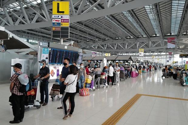 将300名在泰国的越南公民运送回国 hinh anh 1