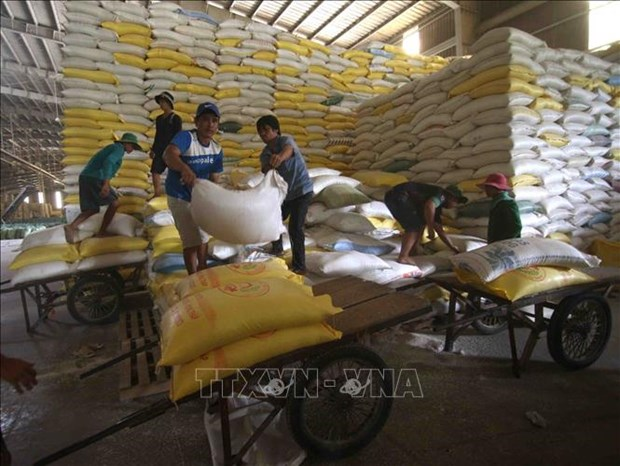工贸部将严管各国际口岸大米出口活动 hinh anh 1