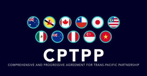 泰国为加入CPTPP谈判进程做好准备 hinh anh 1