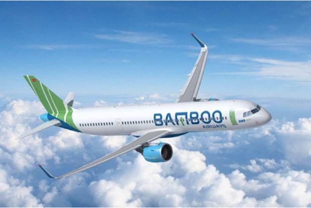 越竹航空公司预计于2021年底重启飞往美国航线 hinh anh 1