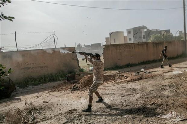 联合国安理会就利比亚形势召开视频会议 越南呼吁严格遵守人道主义停火令 hinh anh 1