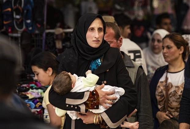 越南常驻联合国代表团副团长范海英呼吁国际社会向叙利亚提供援助 hinh anh 1