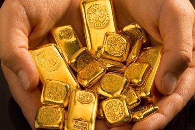 越南国内黄金价格保持在4900万越盾左右 hinh anh 1
