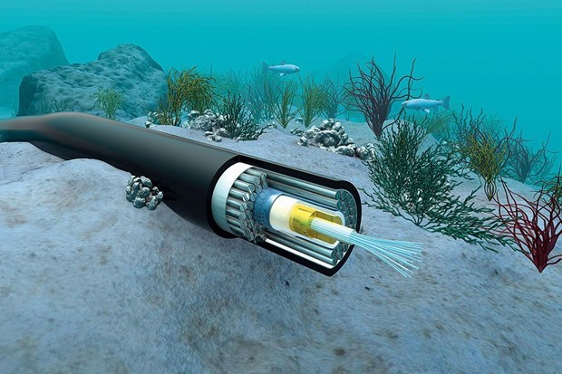 AAG海底光缆系统越南段故障修复推迟至6月2日 hinh anh 1
