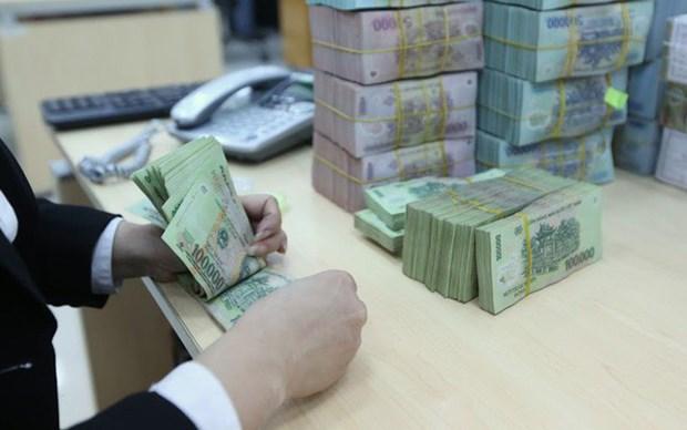 越南国会常务委员会颁发关于2019年中央预算收入增加的决议 hinh anh 1