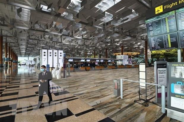 新加坡樟宜机场6月2日起将逐步允许旅客转机 hinh anh 1