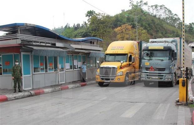 越南对中国出口活动将重见起色 hinh anh 1