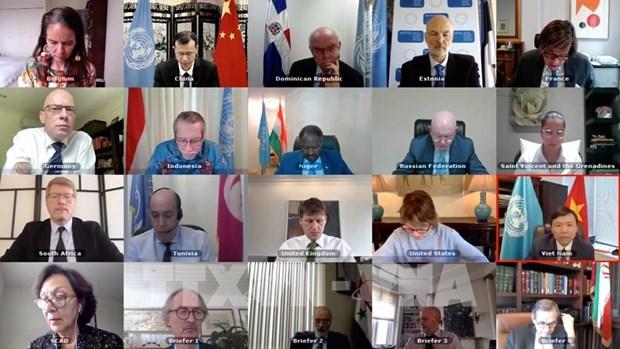 越南首次主持召开越南与联合国安理会10个非常任理事国和联合国秘书长视频会议 hinh anh 1