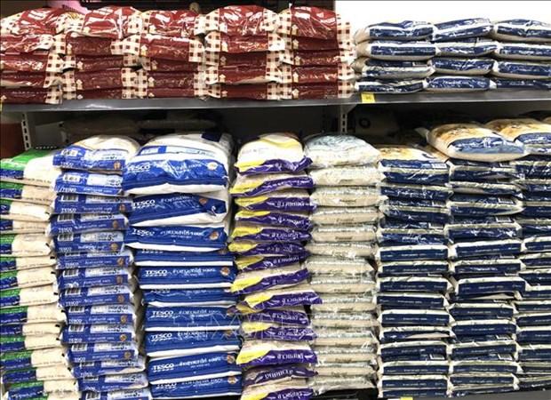 2020-2021年度泰国大米产量可达2400万吨大米 hinh anh 1