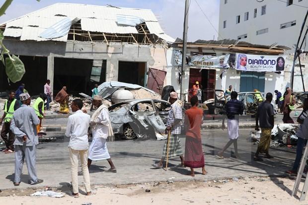 越南支持联合国援助驻索马里特派团在索马里开展的活动 hinh anh 2