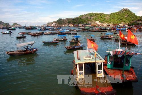 努力将岘港市建设成为越南海洋经济中心 hinh anh 1