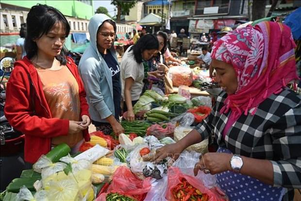 印尼面临新冠肺炎疫情后人口大爆发危机 hinh anh 1