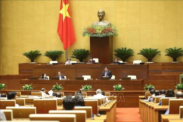 《投资法(修正案)》:明确投资行业 确保公民、企业自由投资原则 hinh anh 1