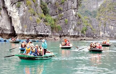赴广宁省的游客人数逐渐恢复增长 hinh anh 2