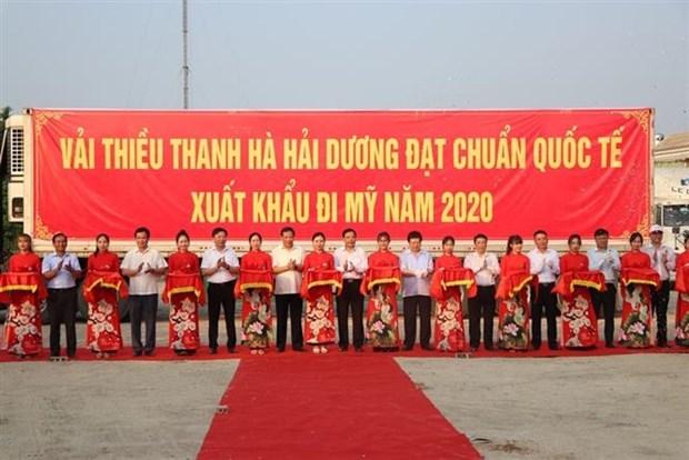 海阳省向新加坡、美国、澳大利亚出口2020年首批荔枝 hinh anh 2