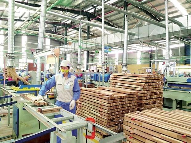 加强对接以降低木材行业供应链中断风险 hinh anh 1