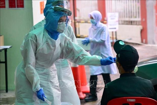东南亚各国新冠肺炎疫情的新动态 hinh anh 2