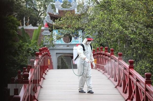 2020年前5月越南接待外国游客量同比下降48.8% hinh anh 2