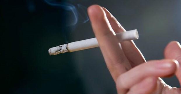 保护青少年免受烟草的影响 hinh anh 1
