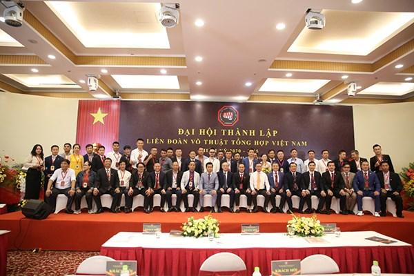 越南混合武术联合会正式成立 hinh anh 1