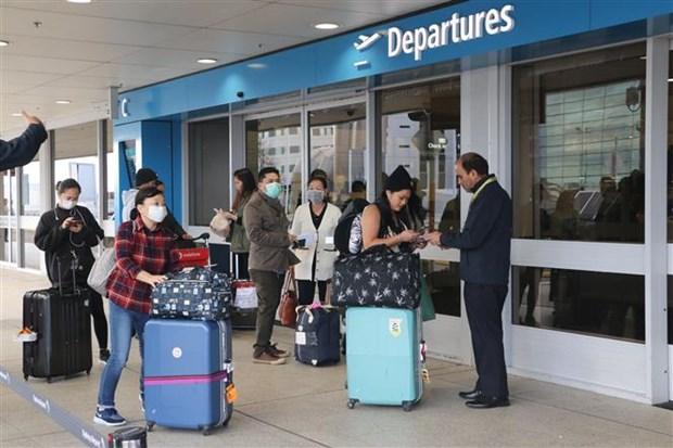 越南将344名在澳大利亚和新西兰的公民运送回国 hinh anh 1