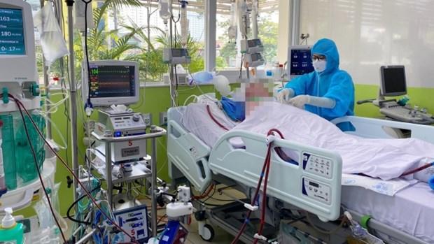 越南6月3日上午无新增确诊病例 第91例病情显著改善 hinh anh 2