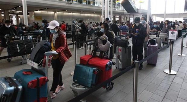 近340名越南公民从英国安全返回越南 hinh anh 1