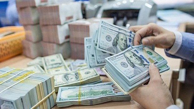 6月5日越盾对美元汇率中间价继续下调1越盾 hinh anh 1