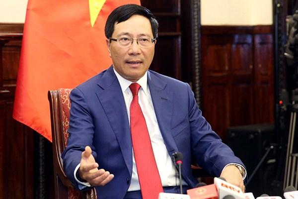 越南政府副总理兼外长范平明会见日本驻越大使 hinh anh 1
