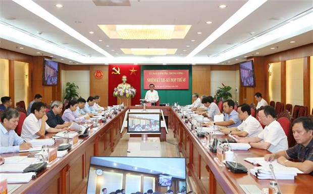 越共中央检查委员会第45次会议:对广义省省委书记给予纪律处分 hinh anh 1