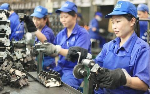 ILO对越南在消除强迫劳动方面所取得的进展予以高度评价 hinh anh 1