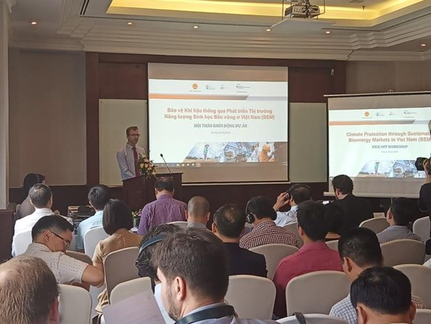 越南大力发展生物质能发电 hinh anh 1