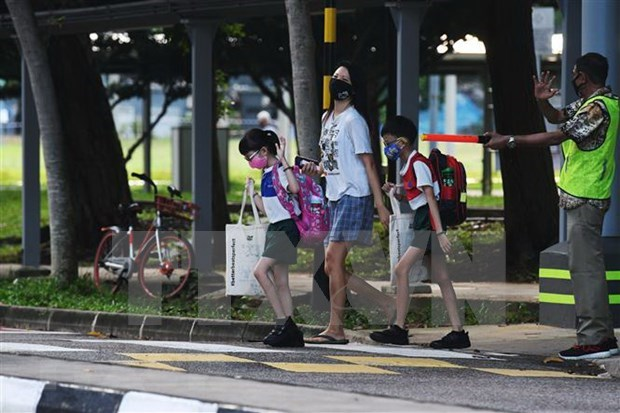 东南亚部分国家的新冠肺炎疫情形势:新加坡新增确诊病例中至少一半无症状 hinh anh 1