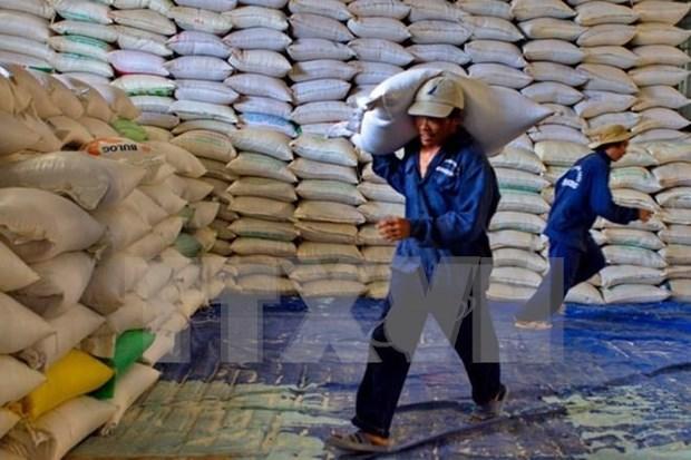 亚洲四个国家竞标向菲律宾供应30万吨大米 hinh anh 1