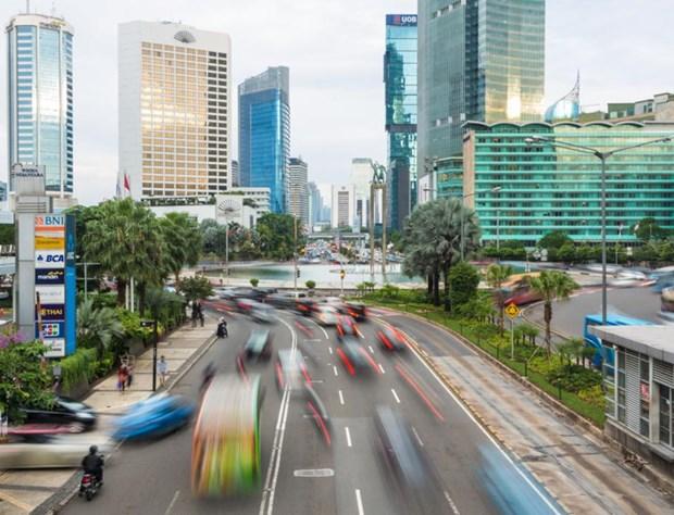 印尼制定经济与伊斯兰金融业复苏计划 hinh anh 1