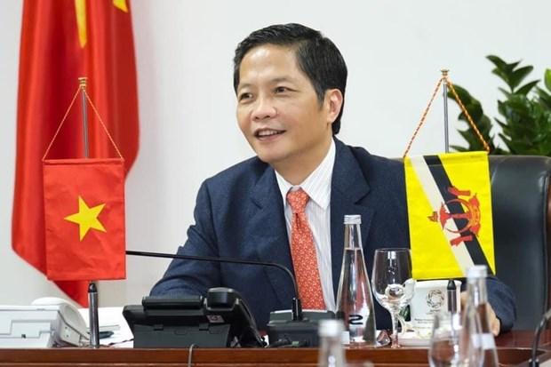 越南与文莱为两国商业航线早日重启作出努力 hinh anh 1
