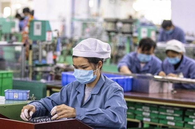 国际社会对后疫情时代越南经济复苏展望给予积极评价 hinh anh 1