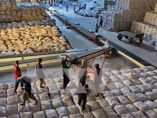 越南中标向菲律宾出售6万吨大米 hinh anh 1