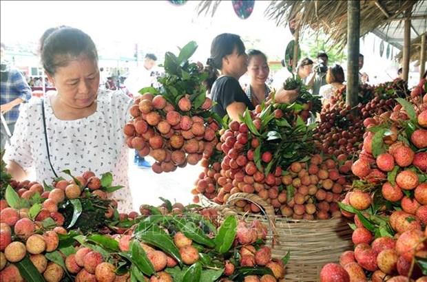 EVFTA协定:提高越南农产品的增值链 hinh anh 1