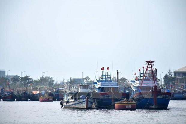关于至2025年打击非法、不报告和不管制捕鱼的港口国措施协定实施计划获批 hinh anh 1