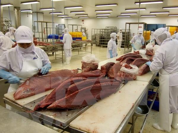 越南海产品出口活动的机会及新道路 hinh anh 1