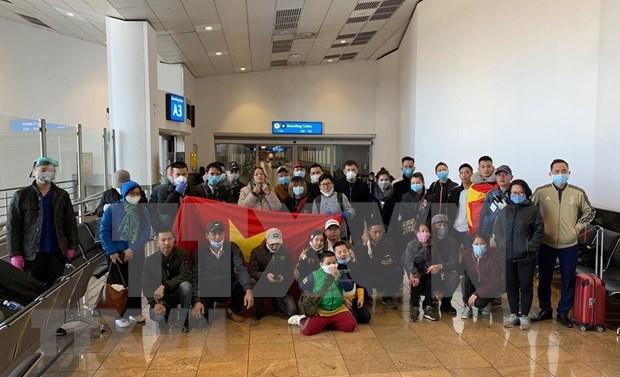 越南将在非洲国家的69名公民接回国 hinh anh 1