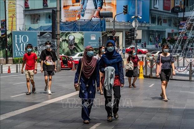 马来西亚和新加坡失业率创新高 hinh anh 1