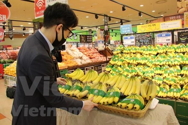 越南香蕉正式进入韩国乐天大型连锁超市 hinh anh 1